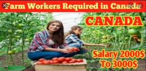 Farm Workers Jobs In Canada